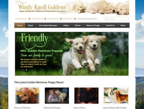 Windy Knolls Goldens – AKC Golden Retriever Dog Breeder Website